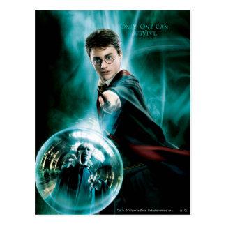 Postal Harry Potter y Voldemort solamente uno pueden
