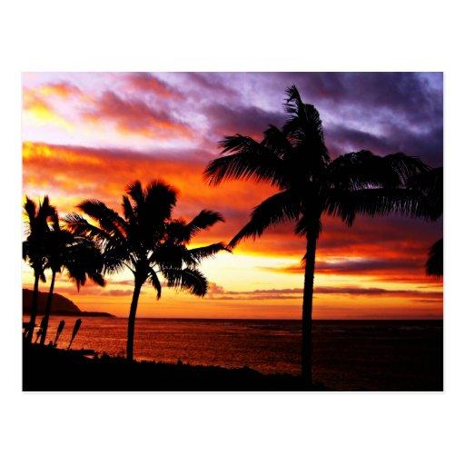 Postal hawaiana de la puesta del sol