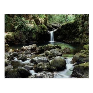 Postal Hawaii, Maui, cascada de A fluye en piscina azul