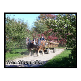 Postal Hayride de New Hampshire