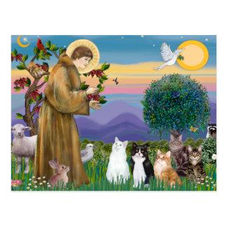 Postal Hermana Frances que bendice 5 gatos