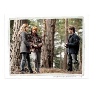 Postal Hermione, Ron, y Harry 2