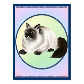 Postal Himalayan del gatito
