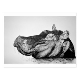 Postal Hipopótamo perezoso