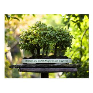 Postal Hojas verdes miniatura del pedestal del pote de