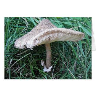 Postal hongo grande con sombrero apuesto, en