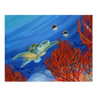 Postal Honu (tortuga de mar verde) y coral negro