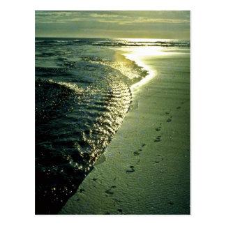 Postal Huellas en la arena, Piha, isla del norte