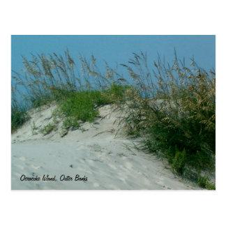 Postal Huellas y dunas de arena, isla de Okracoke, NC