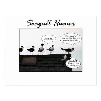 Postal Humor de la gaviota