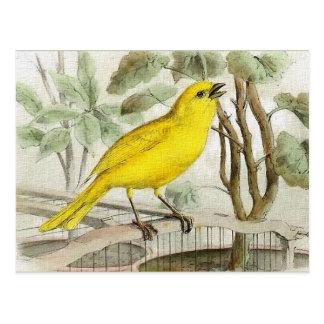 Postal Ilustracion amarillo del vintage