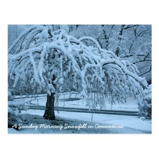 Postal IMG_2425_2, nevadas del domingo por la mañana en