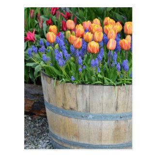 Postal Impresión anaranjada del plantador del tulipán de