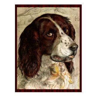 Postal Impresión del perro de Spanial del cocker