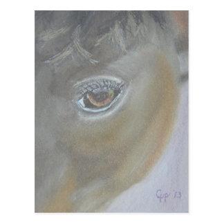 Postal Impulse mi ego - pintura del caballo