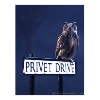 Postal Impulsión de Privet