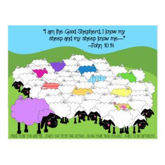 Postal inspirada pastor único de las ovejas del