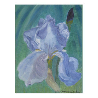 Postal Iris barbudo de la lavanda
