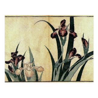 Postal Iris de Katsushika Hokusai