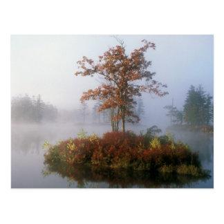 Postal Isla del lago Tully en la niebla
