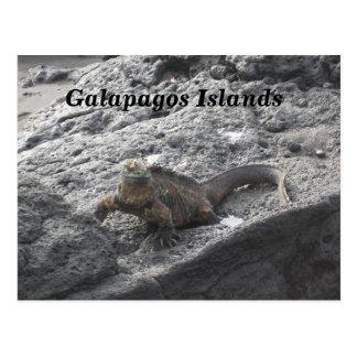 Postal Islas de las Islas Galápagos