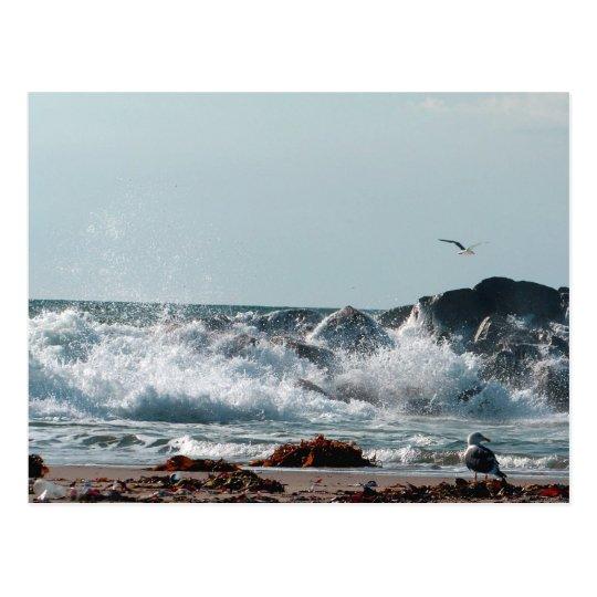Postal It_ Postcard_by Elenne Boothe de las FO que va