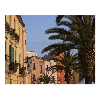 Postal Italia, Cerdeña, Cagliari. Edificios y palmas
