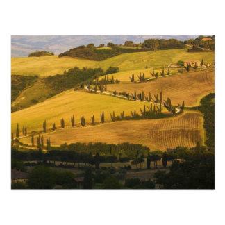 Postal Italia, Toscana, camino del zigzag en Toscana