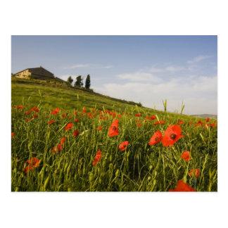Postal Italia, Toscana, chalet toscano en primavera con