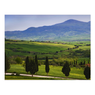 Postal Italia, Toscana. Escénico del Toscano
