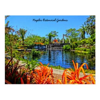 Postal Jardín botánico de Nápoles la Florida - pared del