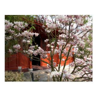 Postal jardín chino