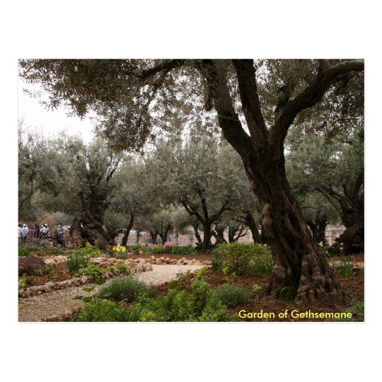 Postal Jardín de Gethsemane