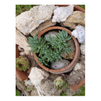 Postal Jardín de rocalla miniatura