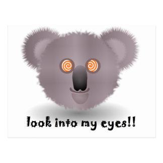 Postal koala hipnótica