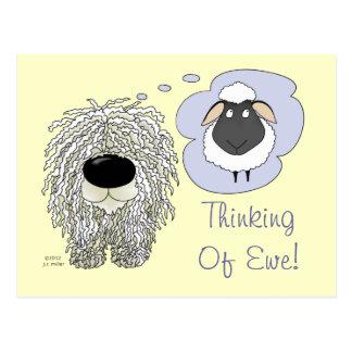 Postal Komondor - pensando en oveja