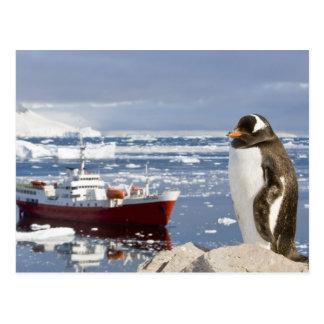 Postal La Antártida, ensenada de Neko (puerto). Pingüino