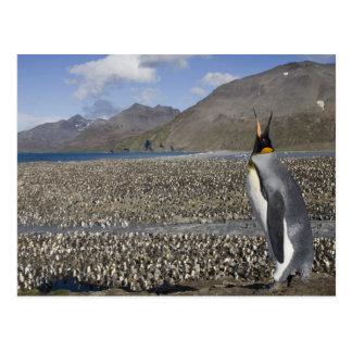 Postal La Antártida, isla del sur de Georgia (Reino