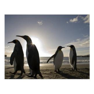 Postal La Antártida, isla del sur Reino Unido de