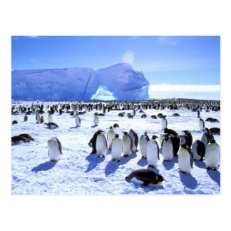 Postal La Antártida, península antártica, mar de Weddell,