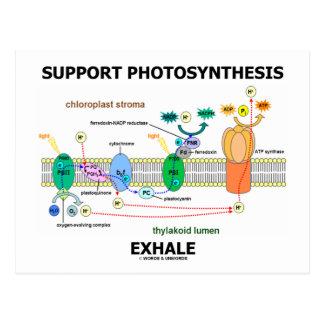 Postal La fotosíntesis de la ayuda exhala (el humor de la