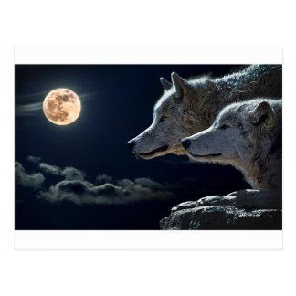 Postal La luna de las luces de cielo nocturno protagoniza