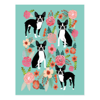 Postal La primavera de Boston Terrier florece - el