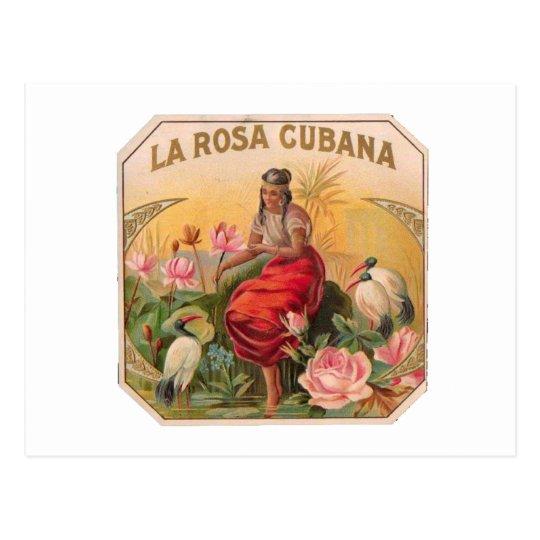 Postal La Rosa Cubana Diseño Vintage Cuba