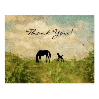 Postal La yegua de la silueta y el caballo hermosos del