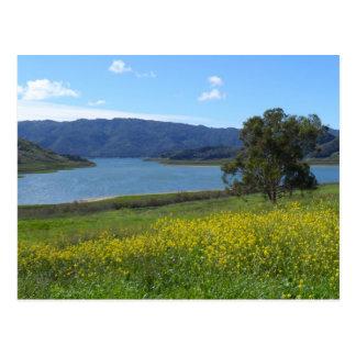 Postal Lago Casitas- Ojai, CA