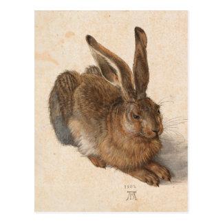 Postal Liebres el | Albrecht Dürer