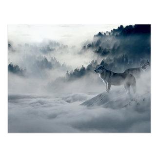 Postal Lobos en paisaje del invierno Nevado