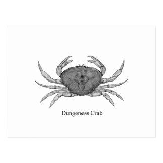 Postal Logotipo del cangrejo de Dungeness (línea arte)