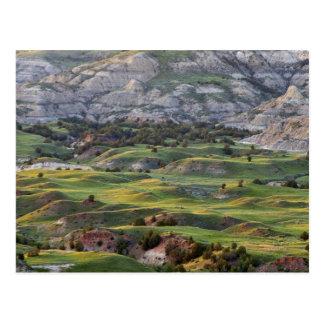 Postal Los badlands coloridos de la colina del dólar